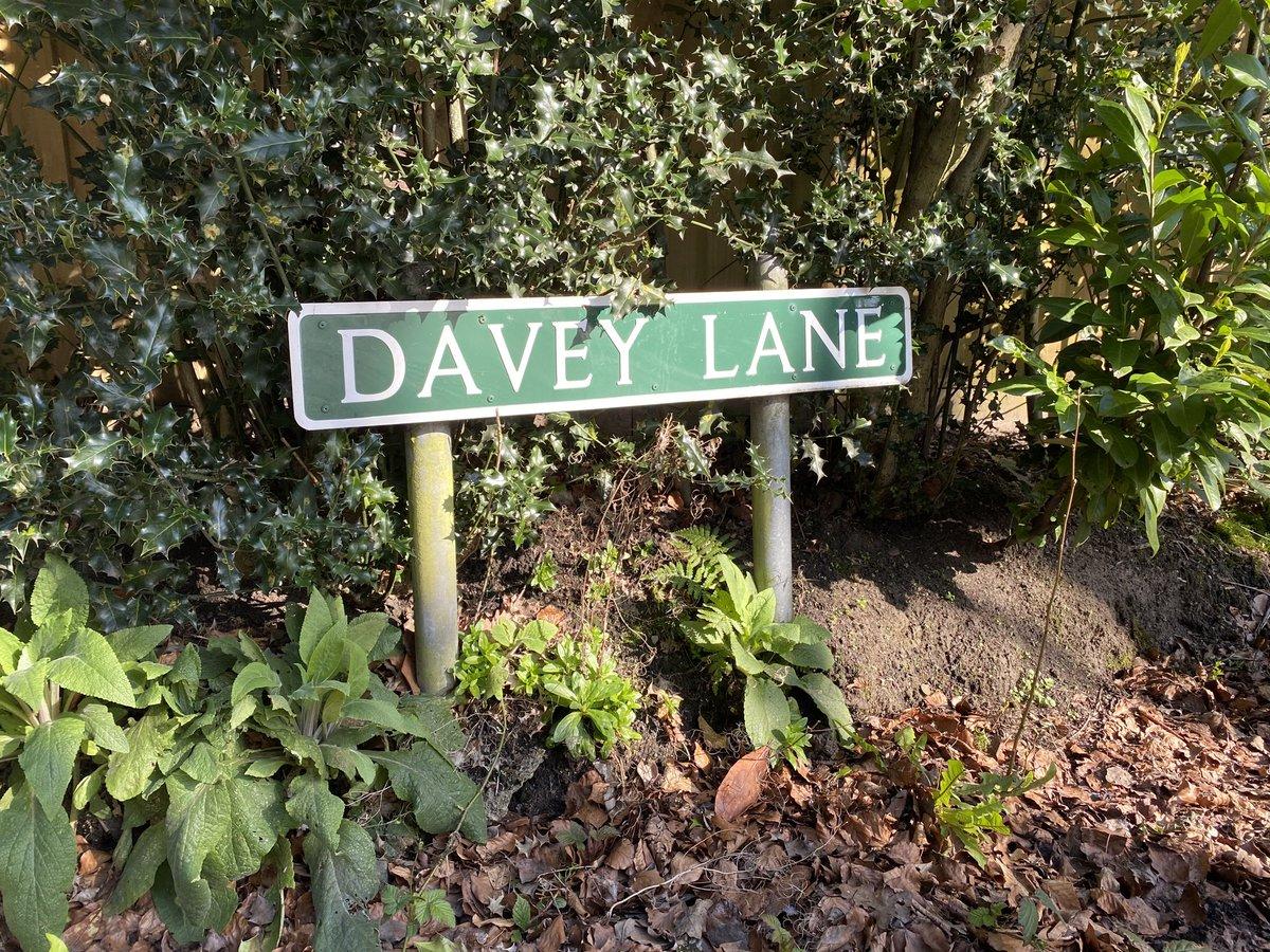 Alderley Edge's favourite guitarist @DaveyLane1 @TheYouAmI https://t.co/DtPNHTq20U