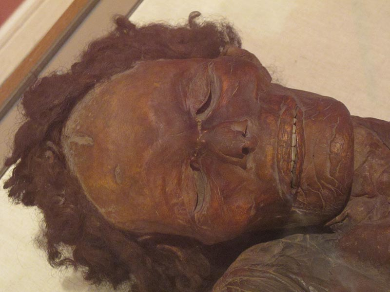 ⭕️ Mummification in the Canary Islands The Canary Islands are a Spanish archipelago composed of eight islands in the Atlantic Ocean in the northwest coast of Africa near Morocco. ℹ️ asor.org/anetoday/2020/… ℹ️ archaeologyin.org