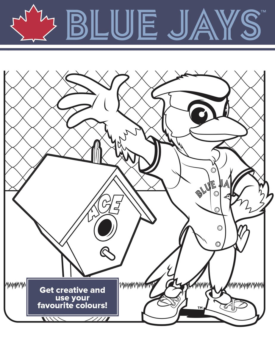 Blue Jay Bird Coloring Page Printable | Bird coloring pages, Bird ... | 1200x924