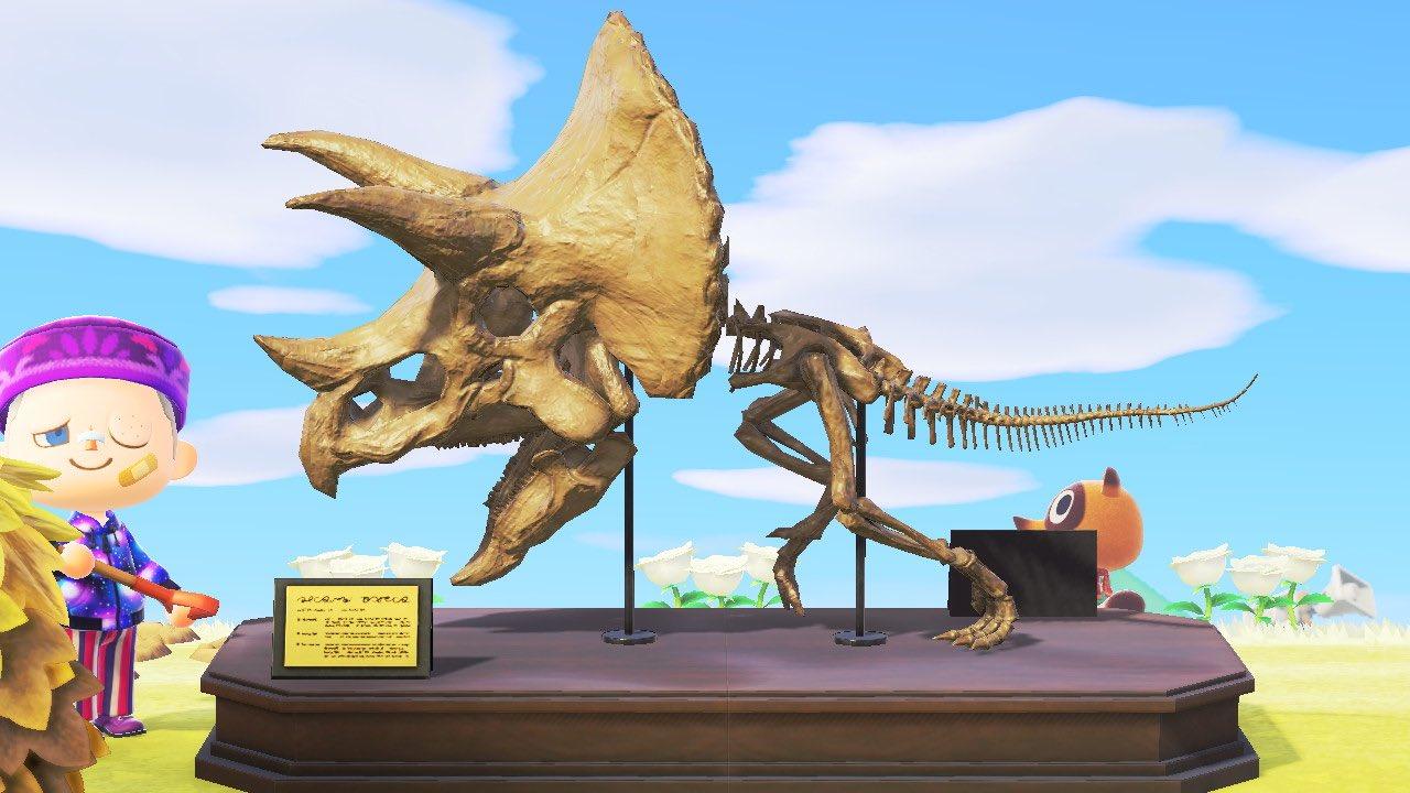 化石 組み合わせ ポケモン