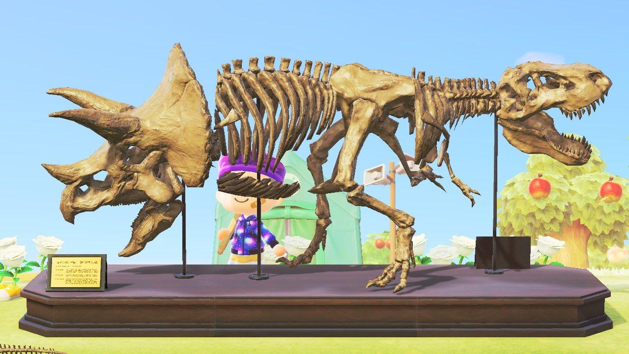 組み合わせ ポケモン 化石