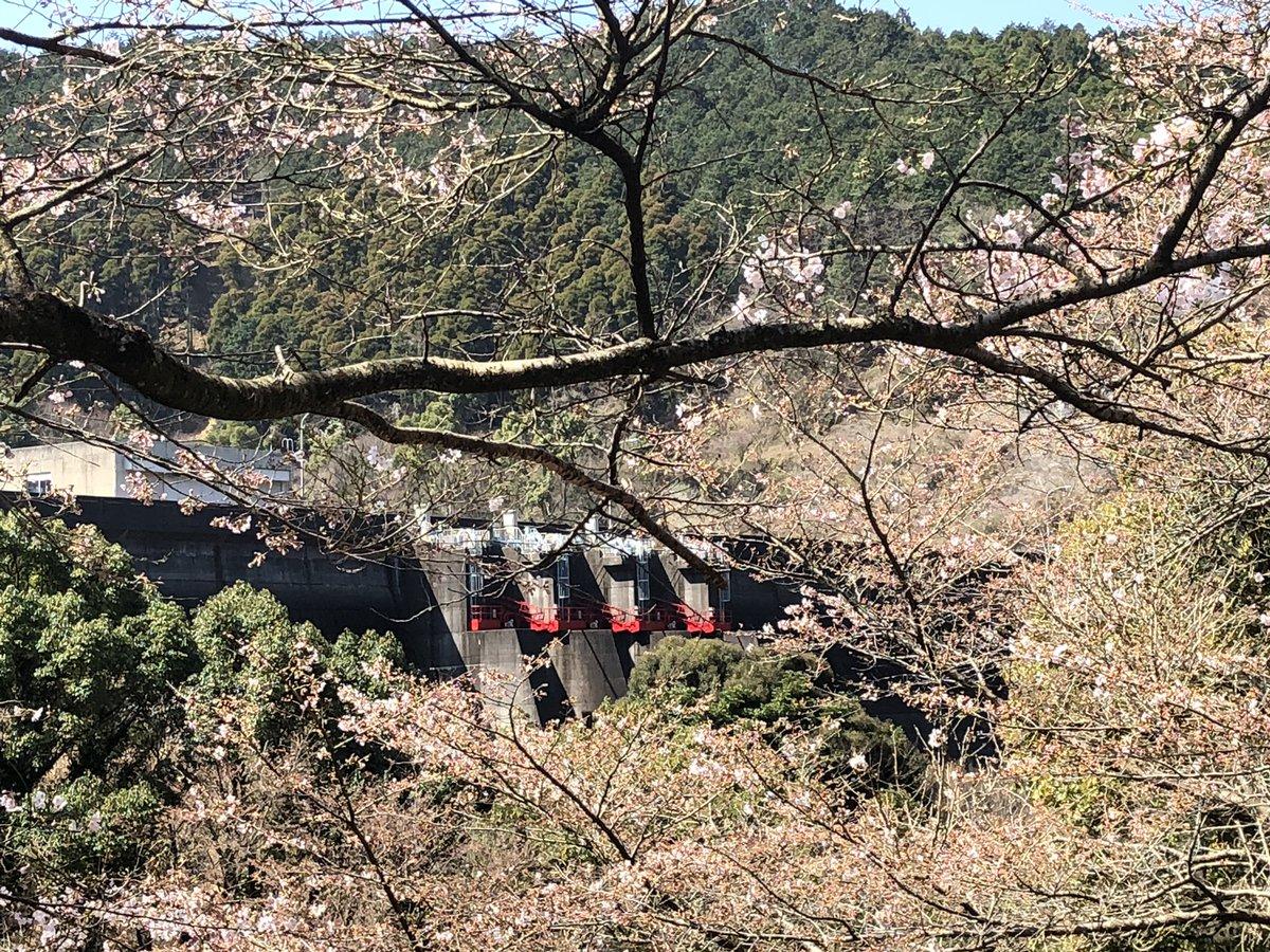 福岡 県 ダム 貯水 率 リアルタイム