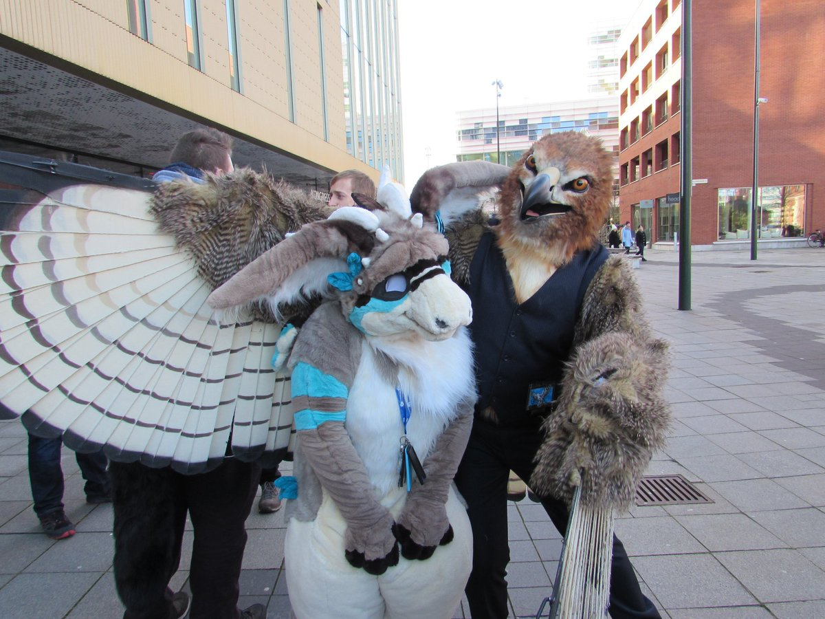 Two lovely birds I got pictures of during #nfc2020 <br>http://pic.twitter.com/NN7LtuiXwo