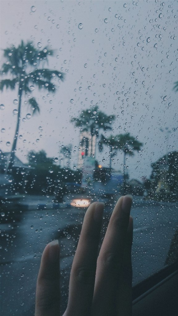 𝙳𝚊𝚒𝚜𝚢𝚎 On Twitter Rain Pluviophile Hujan Petrichor Hand Aesthetic