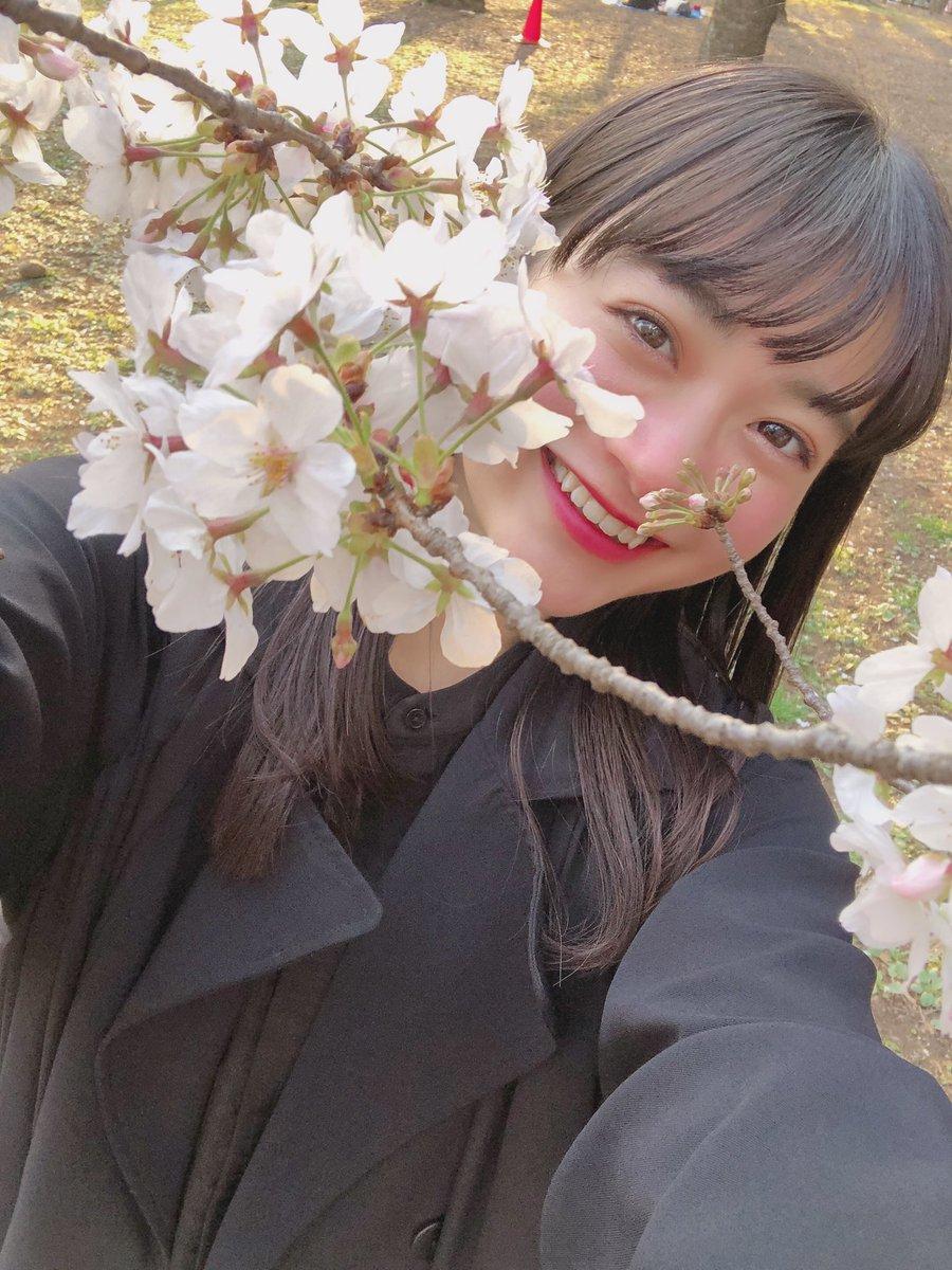 test ツイッターメディア - 桜と自撮り🌸 わーーーい✌︎ https://t.co/ukicCODSMW