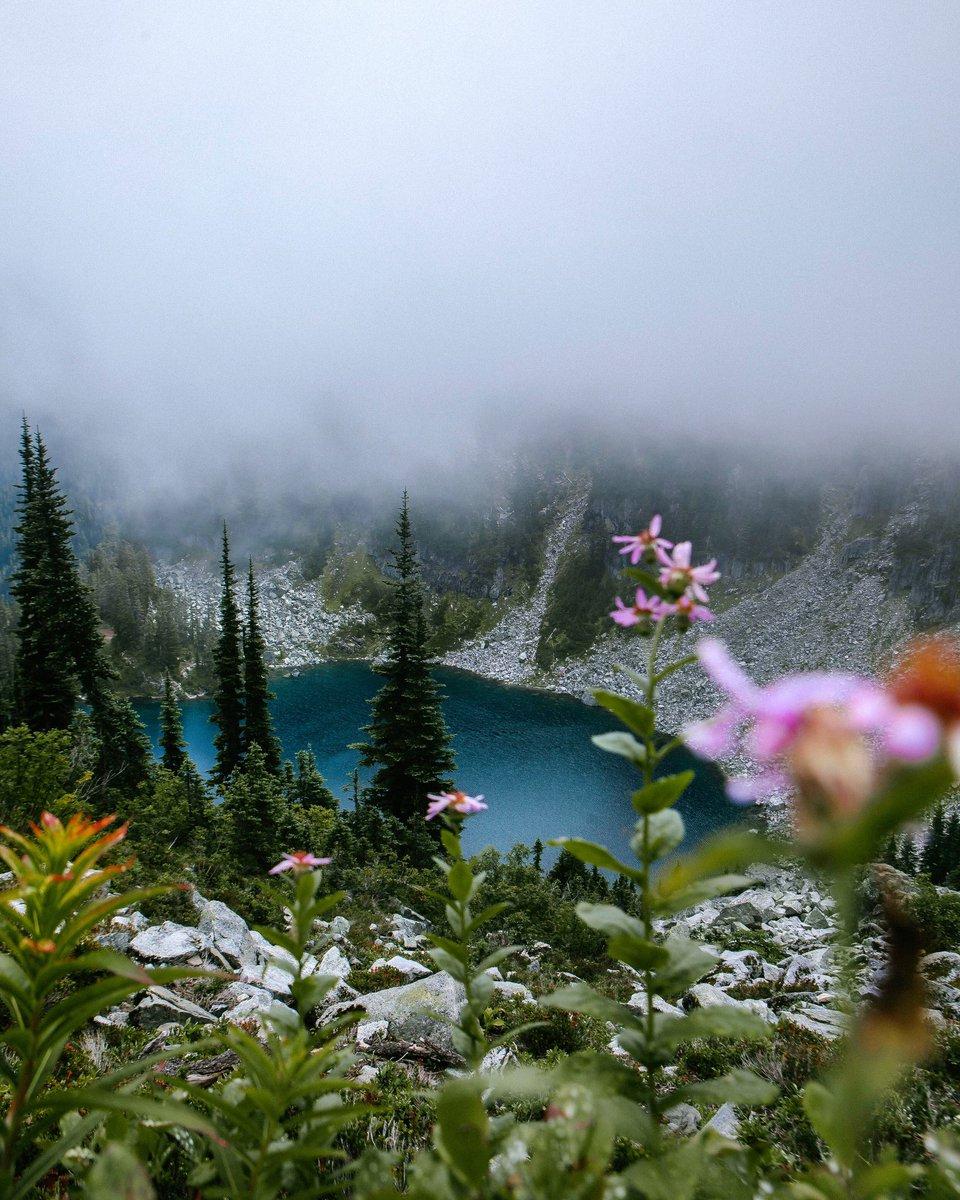 Climb the mountains and get their good tidings. —John Muir