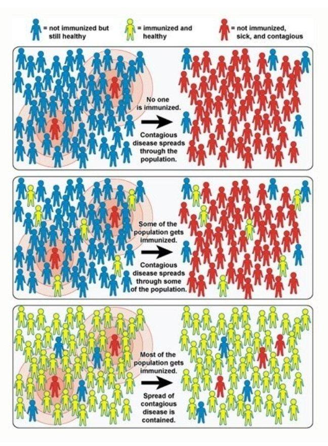 Mengenal Herd Immunity, Cara yang Disebut Bisa Tekan Covid-19