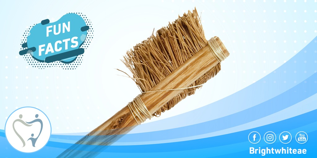 In 1498, the first toothbrush with bristles was made inChina, using hair from hogs, horses, and badgers. The firstofficial commercial toothbrush was manufactured in 1938.  #hythem_abdelatif #brightwhiteae #dental #dubai #jumairah #uae #abudabi #hollywood #veneers #staysafepic.twitter.com/gHqCOl1bQe