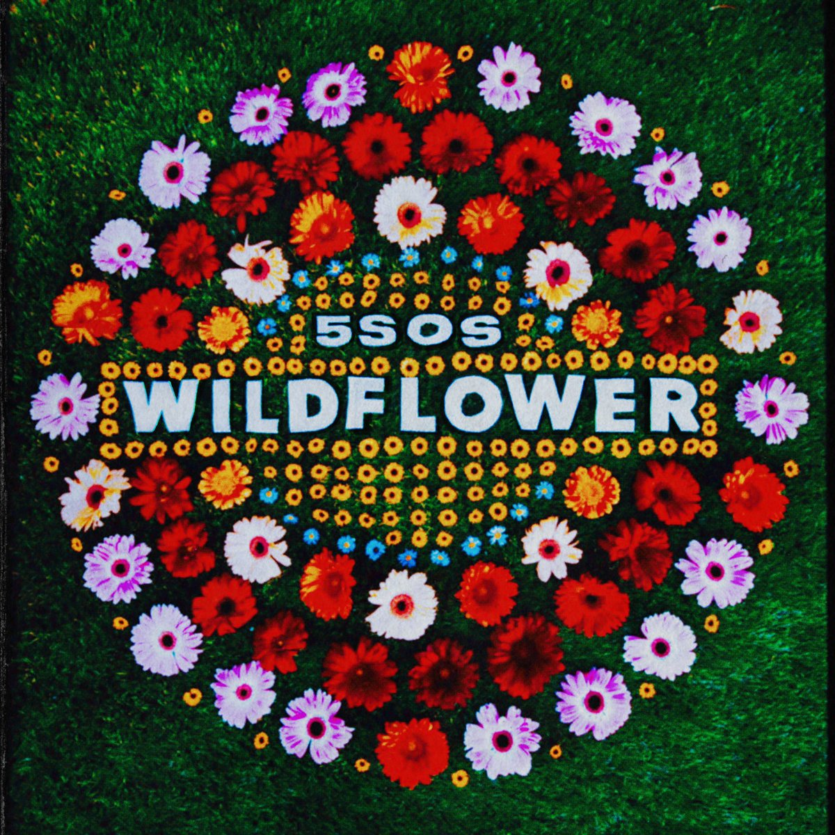 Wildflower // March 25 // smarturl.it/CALM5SOS
