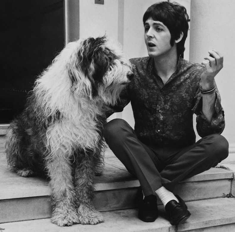 Paul McCartney with his Old English Sheepdog, Martha. #NationalPuppyDay
