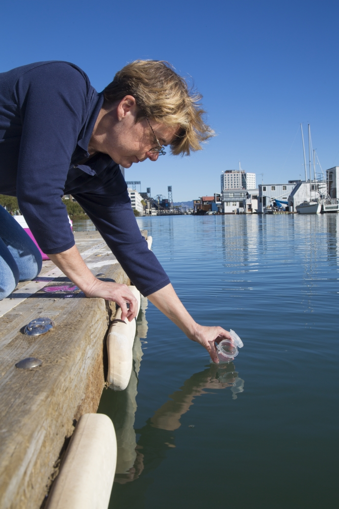 San Francisco Public Utilities Commission staff member collects a water quality sample.