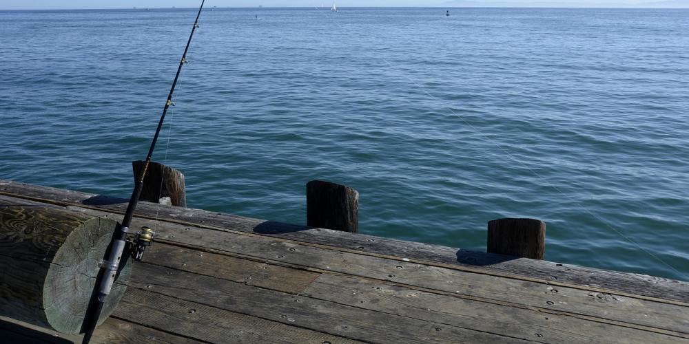 It's absolutely bang-on! #shayrostore #fishing #fishingreel #fishinggear #fishingtime #gofishing #freshwaterfishing #fishingseason #carpfishing #bucketmouth #trout #smallmouth #fishingaddict #largemouthbass #picofthedaypic.twitter.com/fX7IsS7sS3