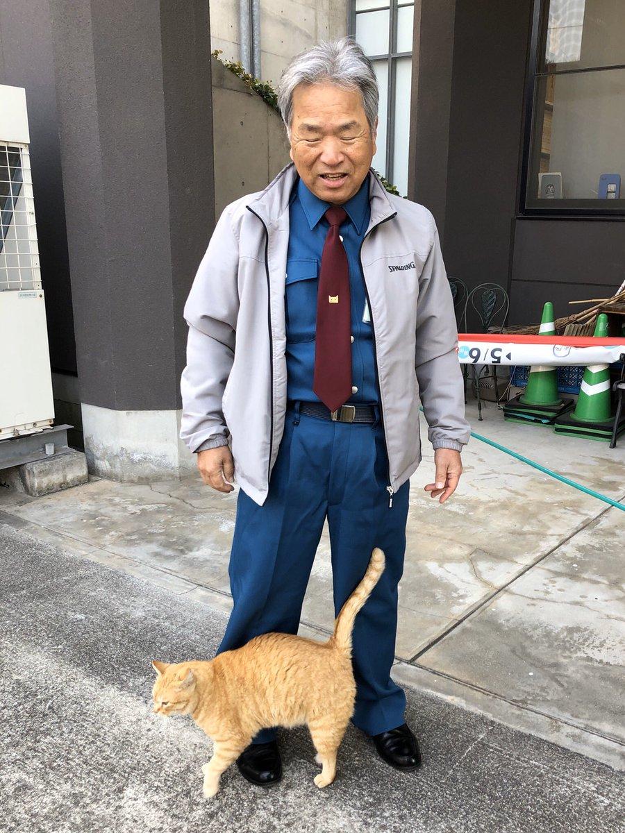 Memories 451『すりすり😺snuggling 』(2019/ 4/ 6)  ほぼ1年前。ゴッちゃんも警備員さんが好きだったニャ。#尾道 #千光寺公園 #尾道市立美術館 #茶トラ #cat