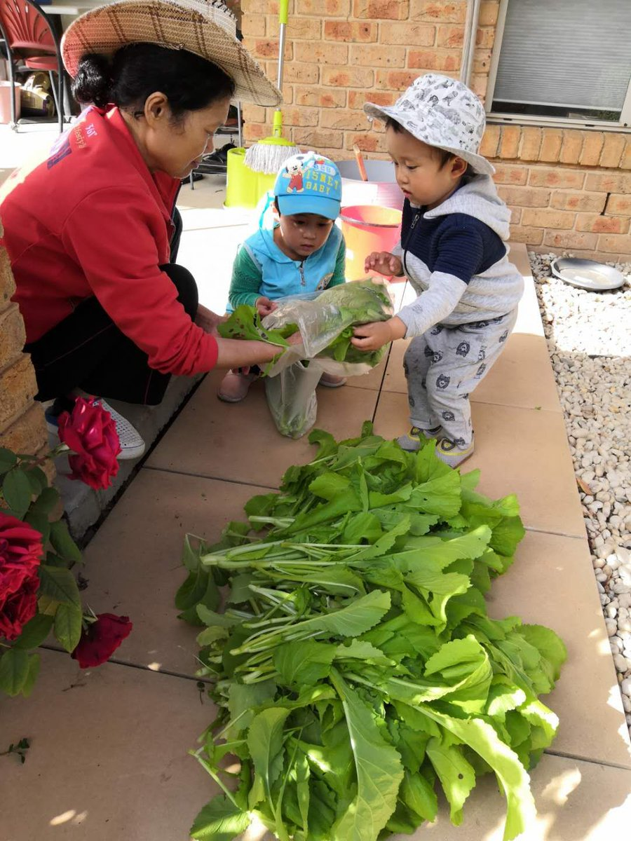 Two of the IB learner profiles are 'Inquirers' and 'Caring' & Billie (ELC) is taking the opportunity to demonstrate both through gardening with her grandma & younger brother at home.