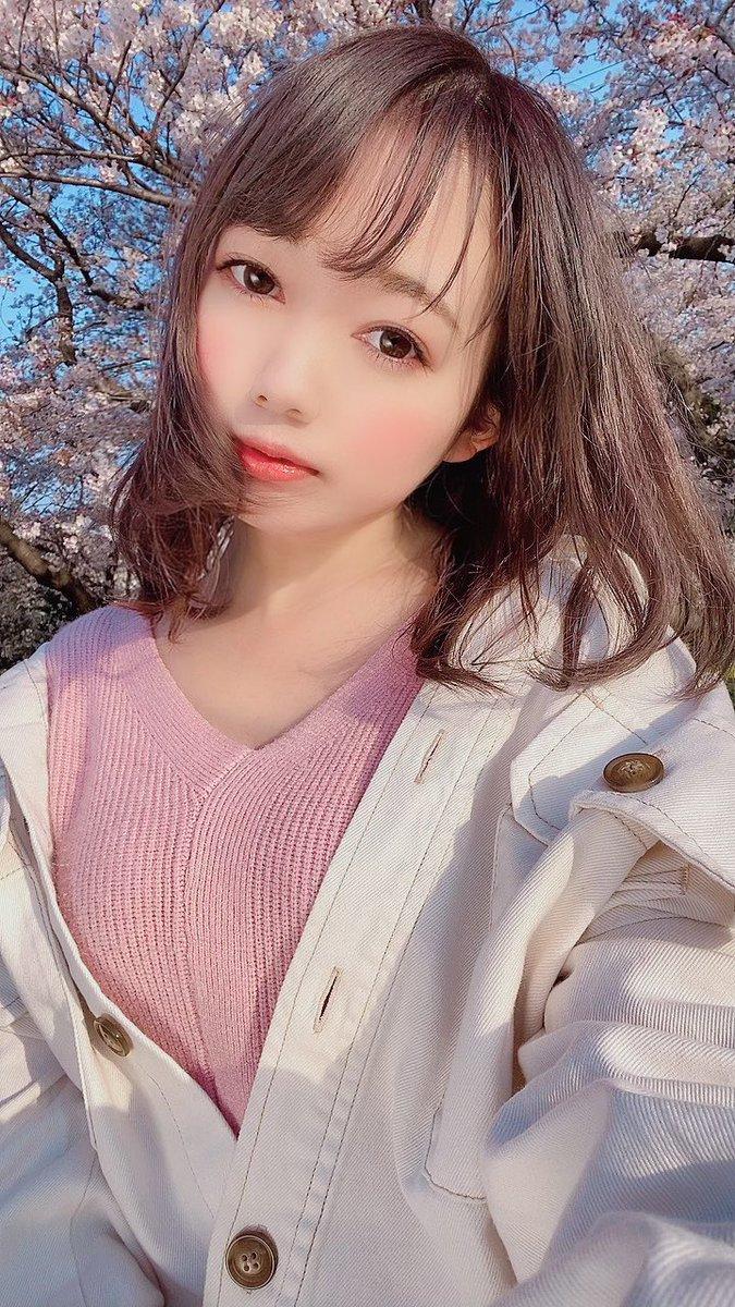 いつかの🌸#桜