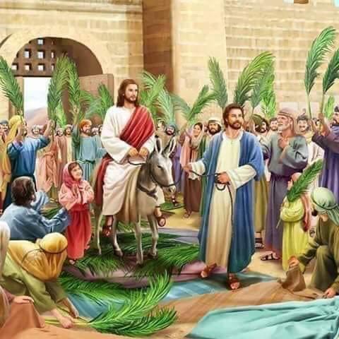 Good #morning & Blessed Palm Sunday for All! Stay Safe. Amen   #USA #London #France #UK #Lebanon #Liban #Beirut #MiddleEast #خليك_في_البيت #خليك_بالبيت #StayAtHomepic.twitter.com/LSlJGRYuNU