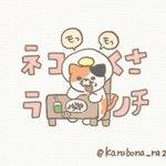 karubona_ra222のサムネイル画像