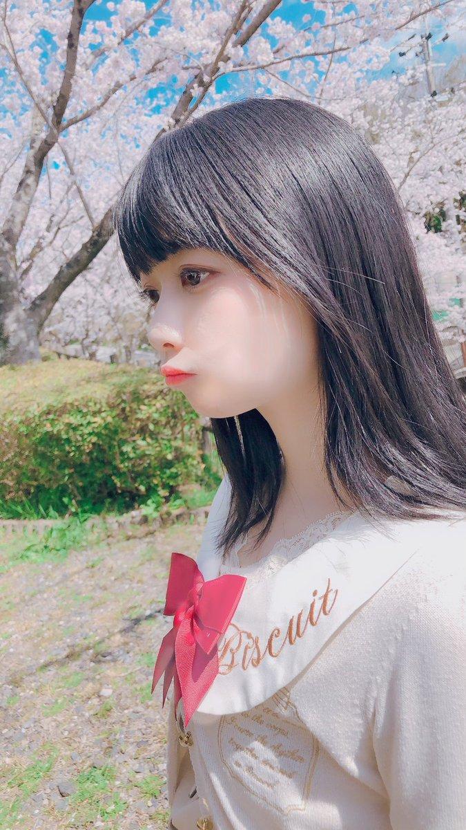 桜と一緒の写真を(*´°`*)🌸