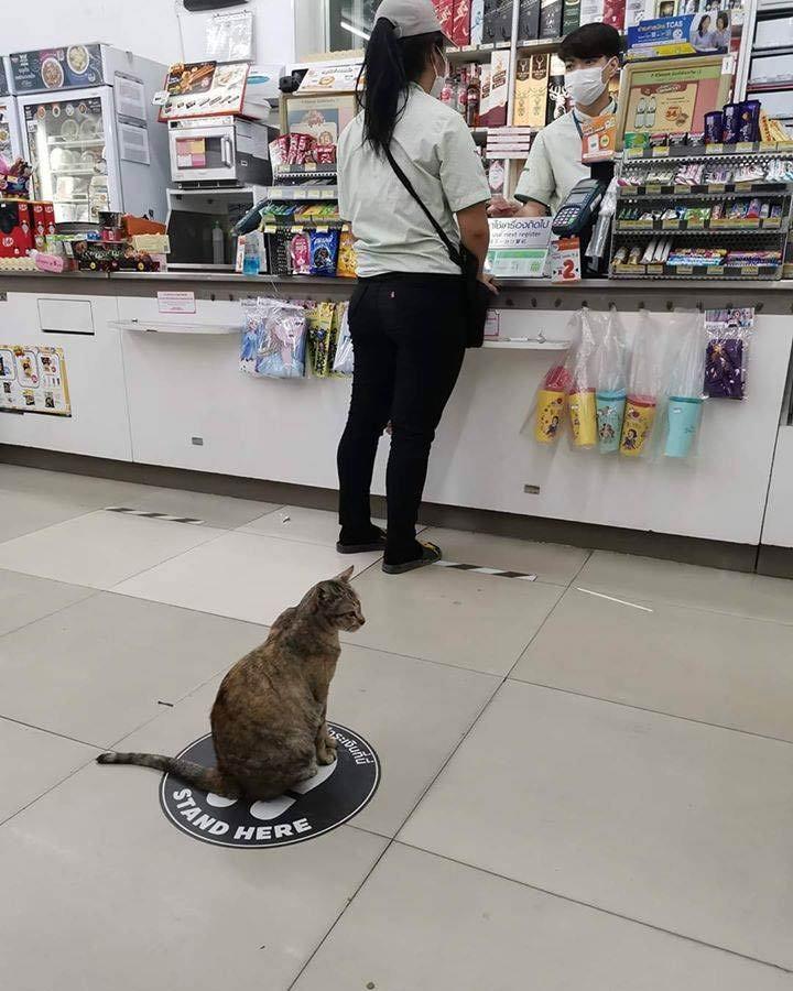お前、何買うんだよ...