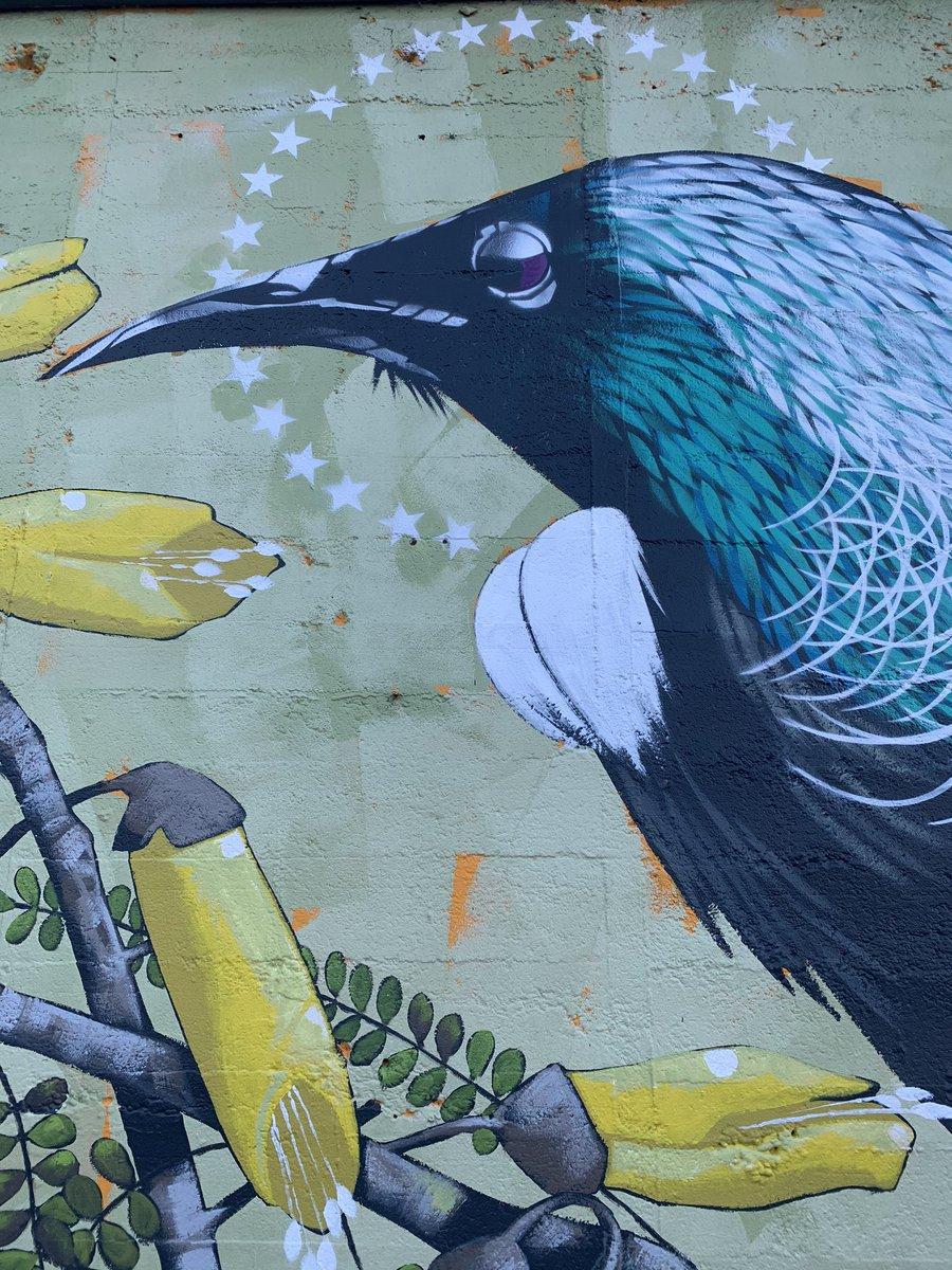 Day 11 #lockdownnzpicoftheday  Neighbourhood stroll street art <br>http://pic.twitter.com/gmUv5ZIpSN