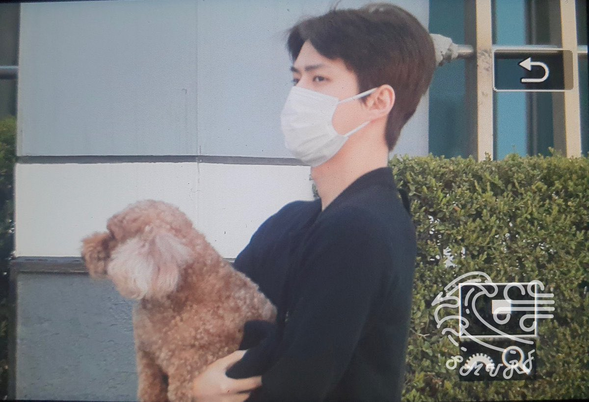 wait he really dyed vivi's fur?????? is that vivi???? what?????? <br>http://pic.twitter.com/RC3wtNUl27