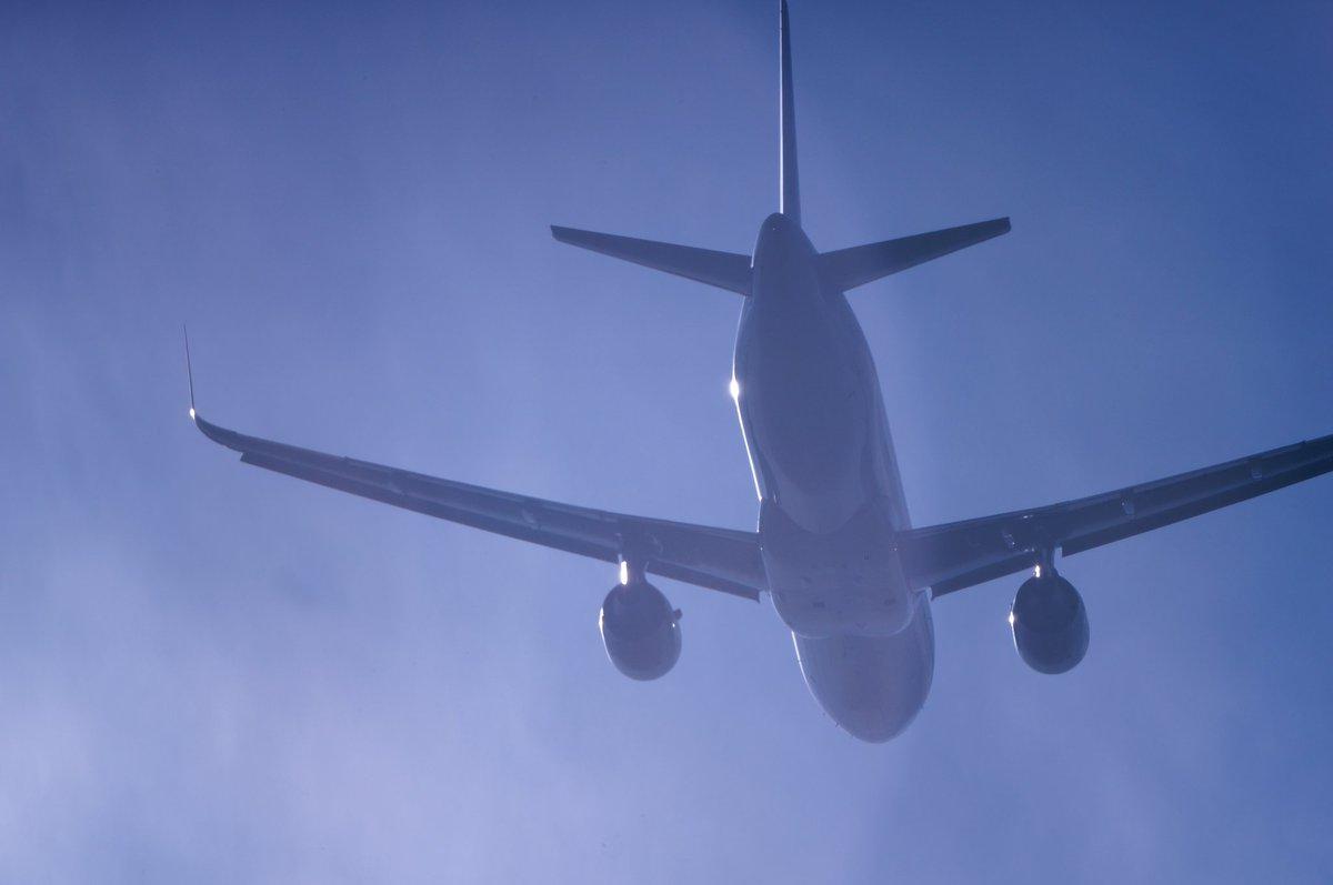 fly high  #写真好きな人と繋がりたい  #ファインダー越しの私の世界pic.twitter.com/RbPCu3H3tY