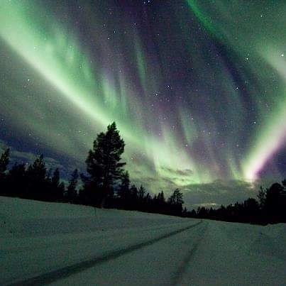 Salla - Finland  Jatatworld on Instagram  #viajar #travel #jatatworldpic.twitter.com/0bVbUWXmoM