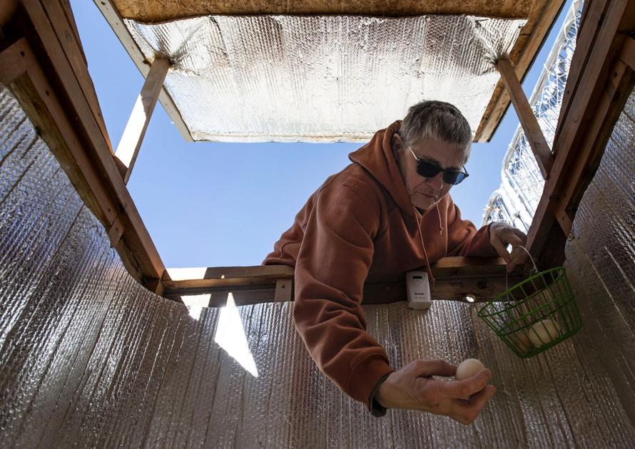 No egg shortages for these #Colorado Springs residents, who know the chicken comes first  #usa #vacation #travel