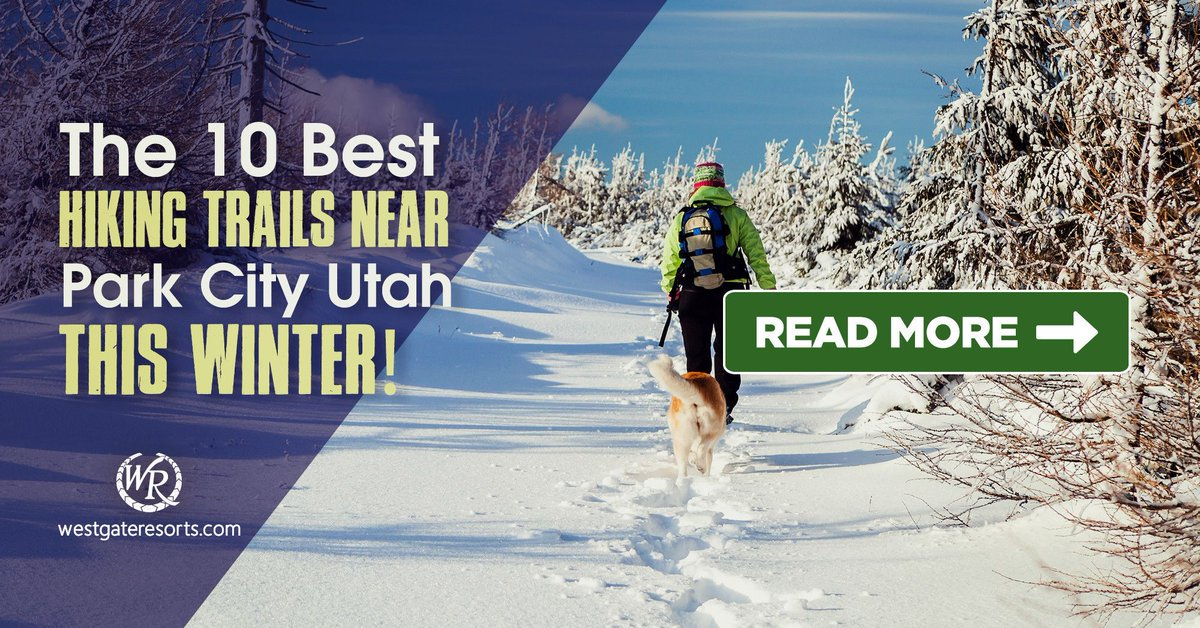 Discover the 10 best #hiking trails near #ParkCity Utah with this top trail series! Whether you love easy trails, mountain trails or just good old-fashioned walking trails,  there's a trail for you to blaze!   #travel via @westgateresorts