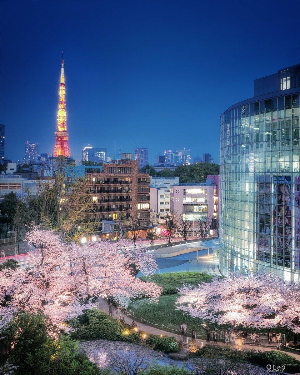 いつでも行ける、会える  そう思っていた。 あたり前の日常 ─ その尊さにようやく気づいたよ  #毛利庭園 #東京タワー #桜 #2018年pic.twitter.com/DMLEOi77mm