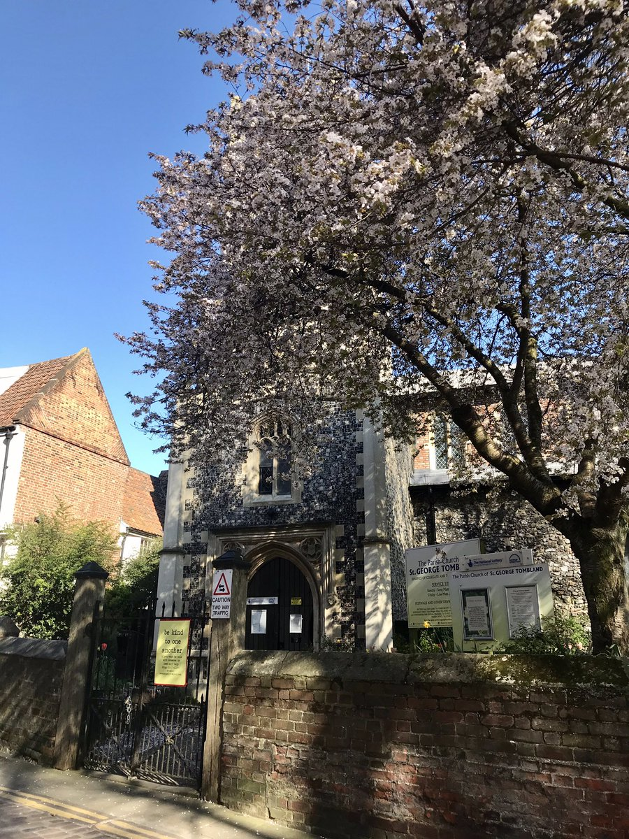 @EDP24 @VisitNorwich Quick stop to snap these pics on my early morning walk. So lovely👏☺️ #blossom #church #blue #clock #natures #confetti #nofilter 💙
