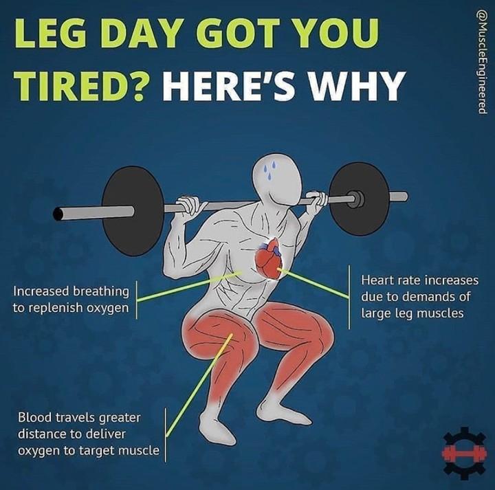 https://soo.nr/FeeB  _ #bodybuilding #bodybuildingmeme  #gymmeme #fitness #fitnessmeme #fitmeme #gymmemes #fitnessmemes #bodybuildingmemes #lifting #liftingmeme #liftingmemes #fitmemes #gymlife #fitnessfood #macros #instafitness #gymrat #gymflow #fitnessfreak #gymfreakpic.twitter.com/CgaZi8MruN