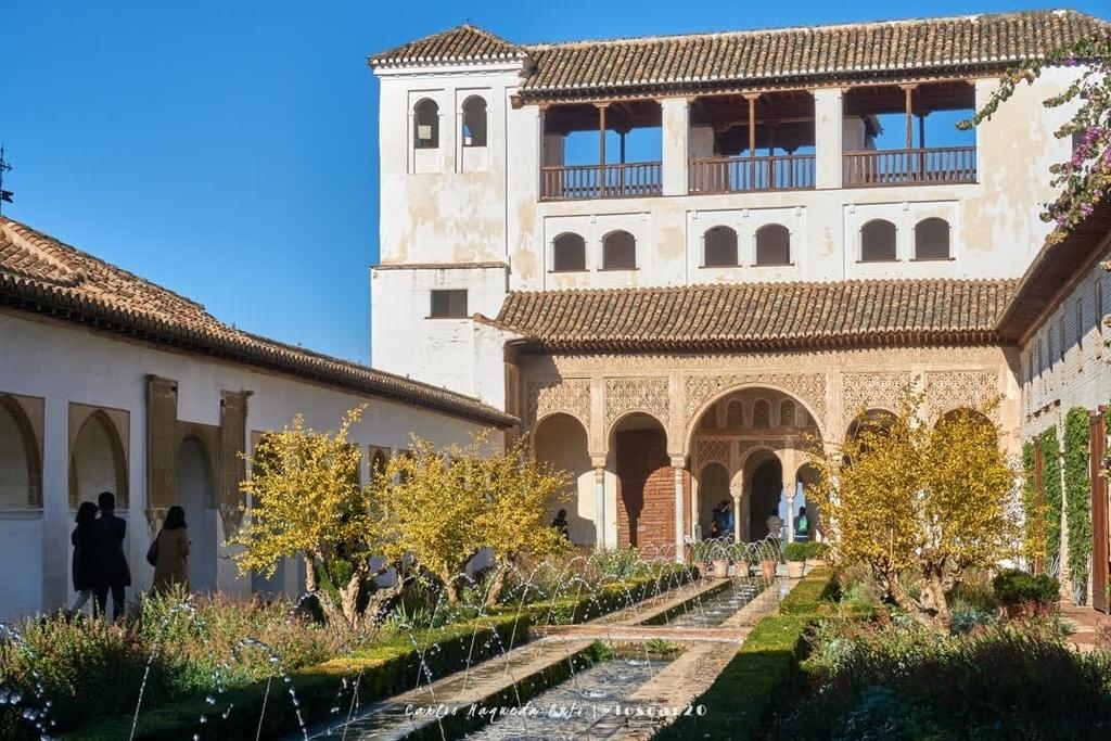Generalife de la Alhambra, Granada.⠀ .⠀ .⠀ .⠀ .⠀ #photography #alhambra #granada #photographysouls #granadaspain #photographylovers #spain #photographyislife #alhambrapalace #photographylover #alhambramoveis #andalucia #photographyislifee #alhamb… https://instagr.am/p/B-mC7NmohIL/pic.twitter.com/2kb9nOts9M