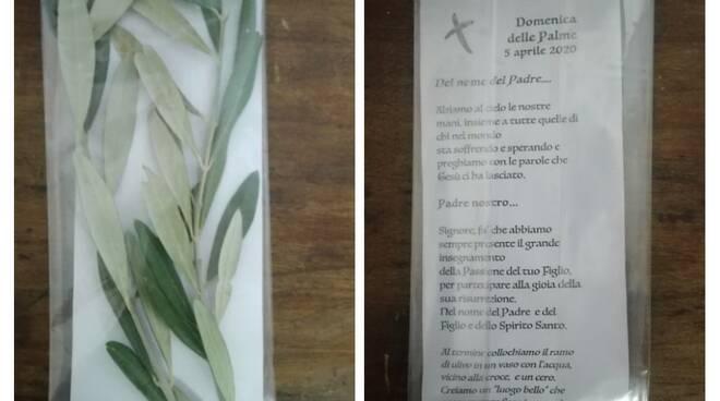 Domenica delle Palme, i volontari consegnano il ramoscello d'ulivo benedetto nelle case del paese http://dlvr.it/RTCDW9pic.twitter.com/ERr9gm2VkF
