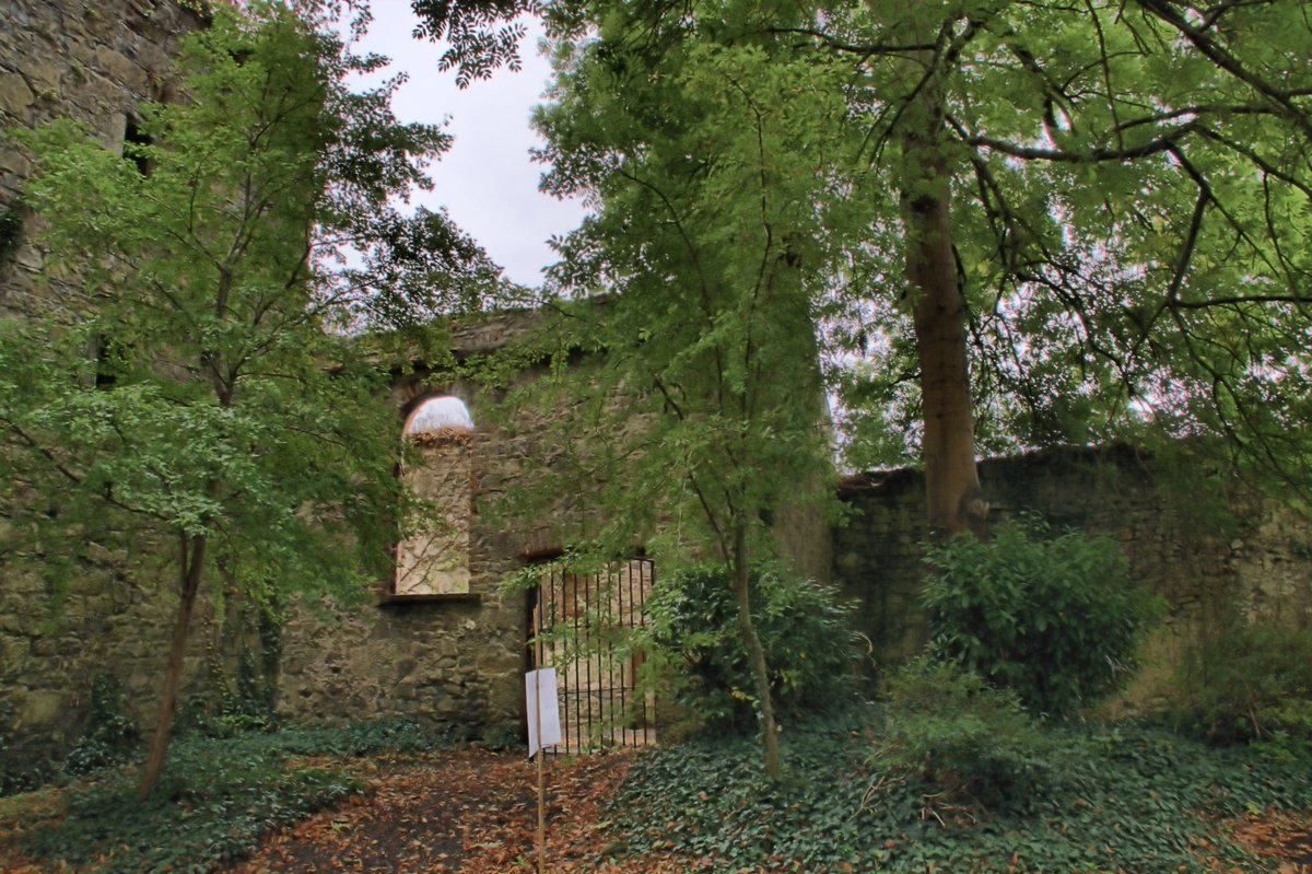 A Medieval Church and Graveyard at Aderrig - Lucan Newsletter
