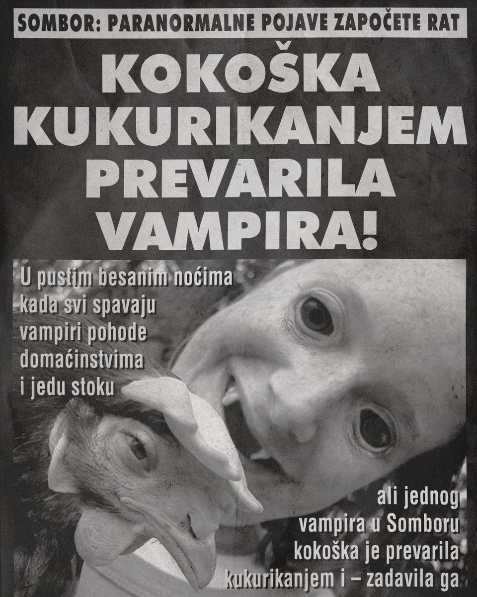 Sombor: Kokoška kukurikanjem prevarila vampira!