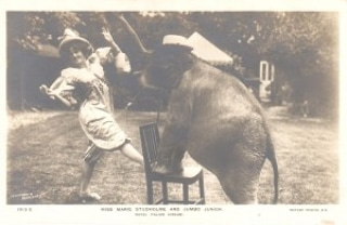 Day 16 of social distancing. (Mary Studholme with elephant 1913)