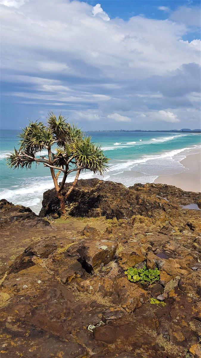 Fingal Head, New South Wales, #Australia. #travel #musttravelpic.twitter.com/2KtbfQfLyy