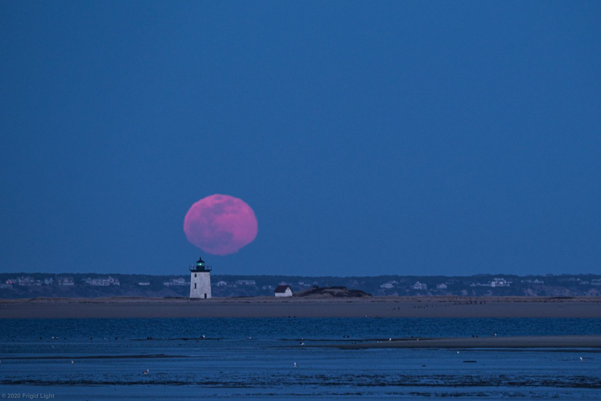 And now for some non-COVID related content: what feels like two years ago (but was really March 9th) I hiked out to photograph the supermoon rising behind Long Point Lighthouse at #sunset. #CapeCodpic.twitter.com/3KdZKOWFgp