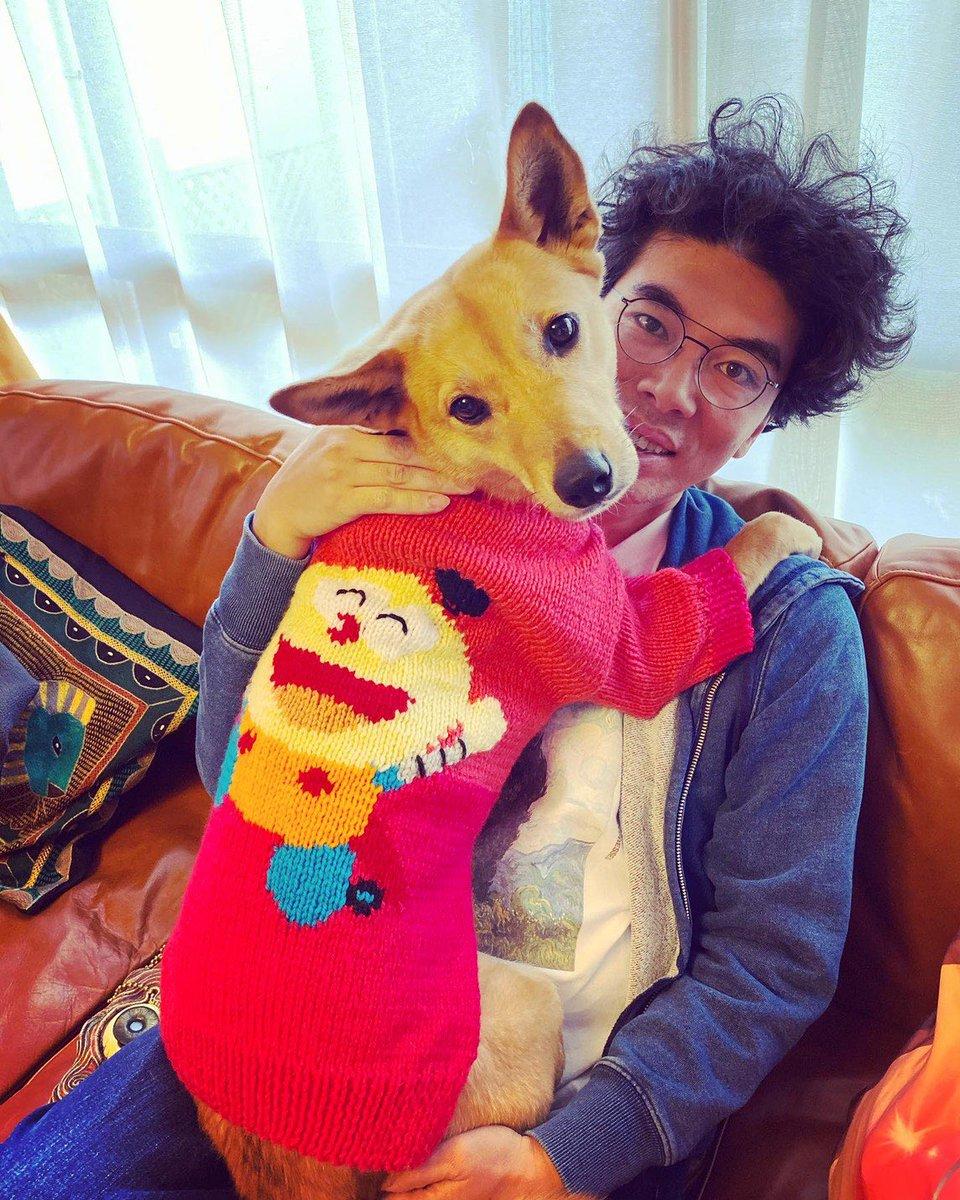 少し季節はずれ…?嫁作、愛犬用のコロ助セーター完成!#人間感アップ