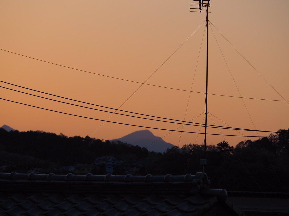 nakatechi photo