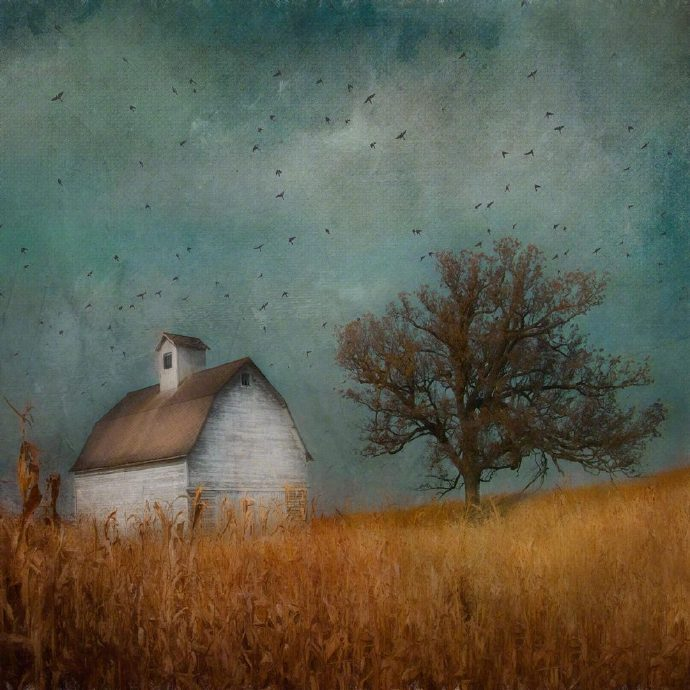 The simple life its about recognizing what is truly important to you, and leaving the rest in the back. 📷 Jamie Heiden