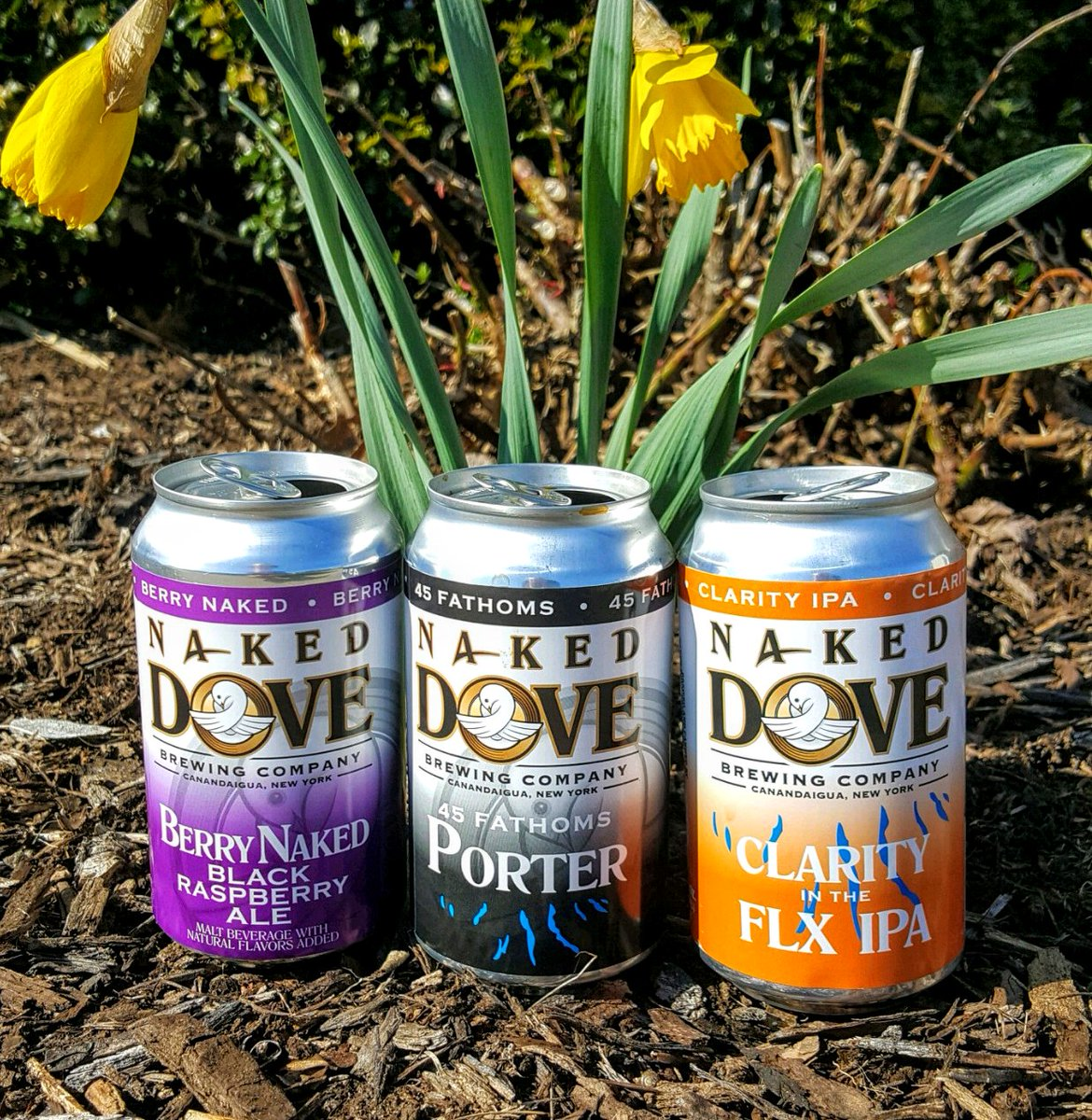 Ep. #32 is out!  This week we're drinking 3 beers from Naked Dove Brewing Co.  Besides that Sopko and Jim sit down with Naked Dove's head brewer and Rochester brewing legend Dave Schlosser. #CraftBeer #podcasts https://comeatmebrew.com http://comeatmebrew.libsyn.compic.twitter.com/4pMNBh0P7j