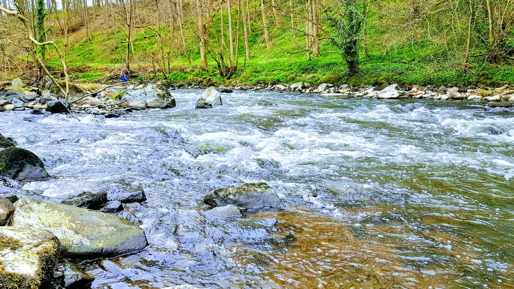 Fast flowing water of the River Almond #MondayMotivation #water #landscape #walking #green #Peace #Riverpic.twitter.com/HgxkTLchix
