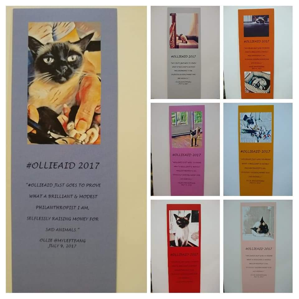 Wednesday 4/8-Sun 5/12 5pm GMT Raffle In honor of @myleftfang Hosted by a Parrot! @ParrotStanley to benefit @jerseycatsorg rescue. £5 US$6 CAN8.5 €5.5 Prize=One of a kind commemorative collection of 7 Ollie bookmarks Free ship. #Ollieaid