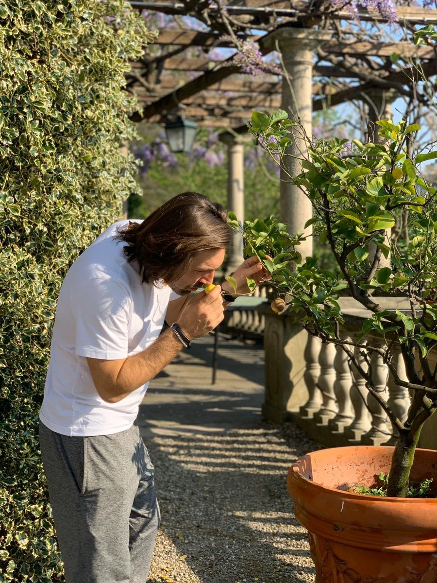 Nature calling 🌱 🍋 #iorestoacasa https://t.co/2oJn2xGAWb
