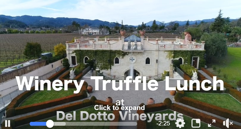 So much has happened since our 10th-anniversary event in January. We wanted to share our 'sizzle reel' to bring a little escapism to your day.  Keep dreaming, keep planning, and we'll see you in #winecountry soon! http://ow.ly/qMVg50z5yjx  #TruffleFestpic.twitter.com/zFecIVOA5A