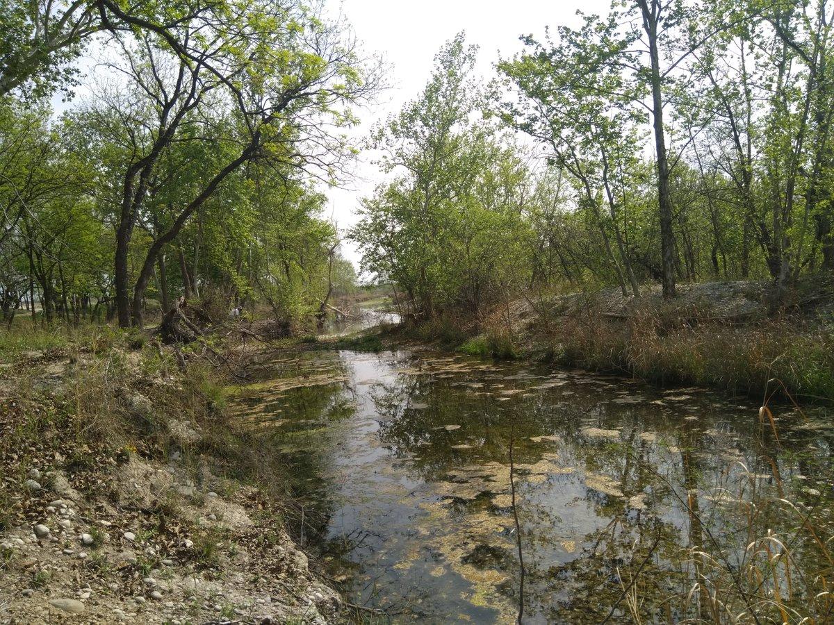 Sra. Directora @bjc_agua de @conagua_mx y Sr. #VMToledoM. Srio. de @SEMARNAT_mx deben revisar las razones por las que se concesionaron humedales del #RioSanRodrigo para extraer Mat Pétreo en la Deleg. Local Coahuila en 2016, y cancelarlos: ecosistemas prioritarios en el #PND2019 https://t.co/mSEMgOwmLS