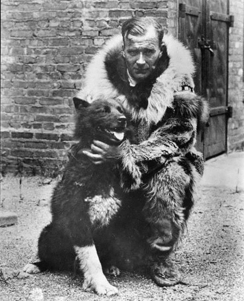 Gunnar Kaasen and his team of 13 dogs, led by the Siberian husky, Balto, completed the last leg of a 1925 trip to deliver 300,000 units of diphtheria antitoxin to Nome, Alaska. They traveled by night in temperatures of -23 °F (−31 °C)