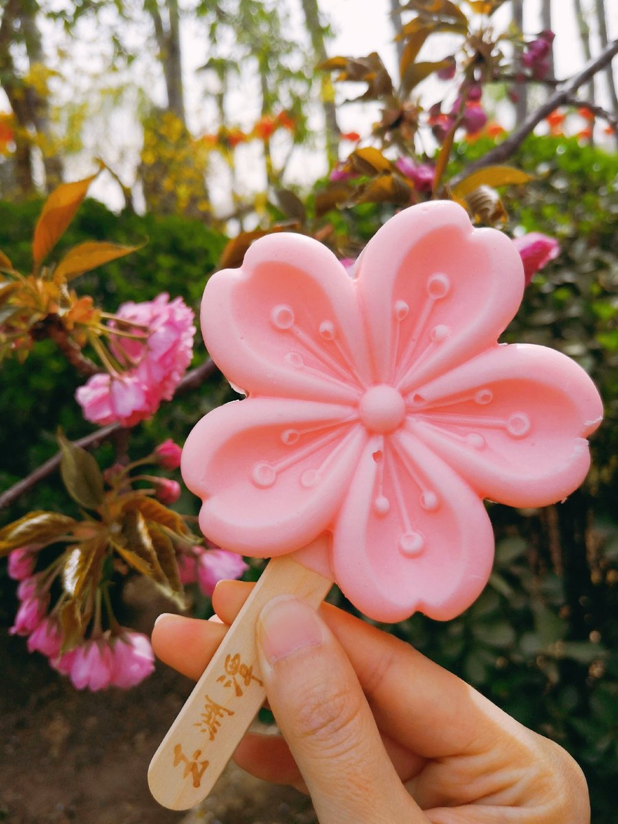 Sakura and sakura flavour ice cream.  It's getting warmer.  Will the #Coronavirus end quickly?  #COVID19 #StaySafe #photo #PhotoOfTheDay #nature #TuesdayMotivation #花 #写真pic.twitter.com/zOEHqE3TSg